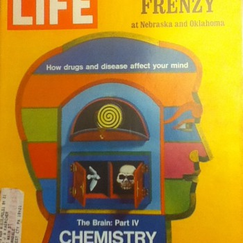 Life Magazine: Football Frenzy and Chemistry of Madness