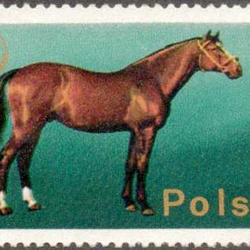 "Poland - ""Horses"" Postage Stamps - Stamps"