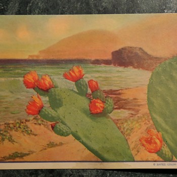 Interesting postcard from Hawaii