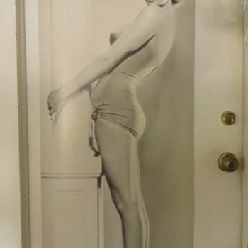 Marilyn Monroe Door Poster