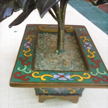 My cloisonne bonsi tree - Asian
