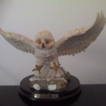 The Snowy Owl - Animals