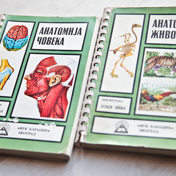 Two Anatomy books