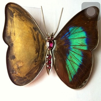 Butterfly wings brooch kyratisation ! Part #1