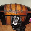 Hump Back Wood & Metal Trunk