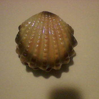 CLAM SHELL TRINKET BOX