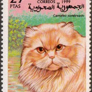 "1999 - Saharan Rep. ""Persian Cat"" Postage Stamp"