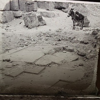 1800's Glass Photo Slides - Egyptian Expedition - Pyramid of Giza