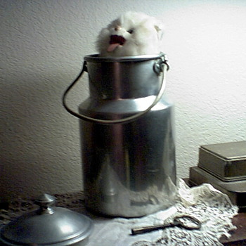 """Musical wind up """"cat in a milk pail' toy"""