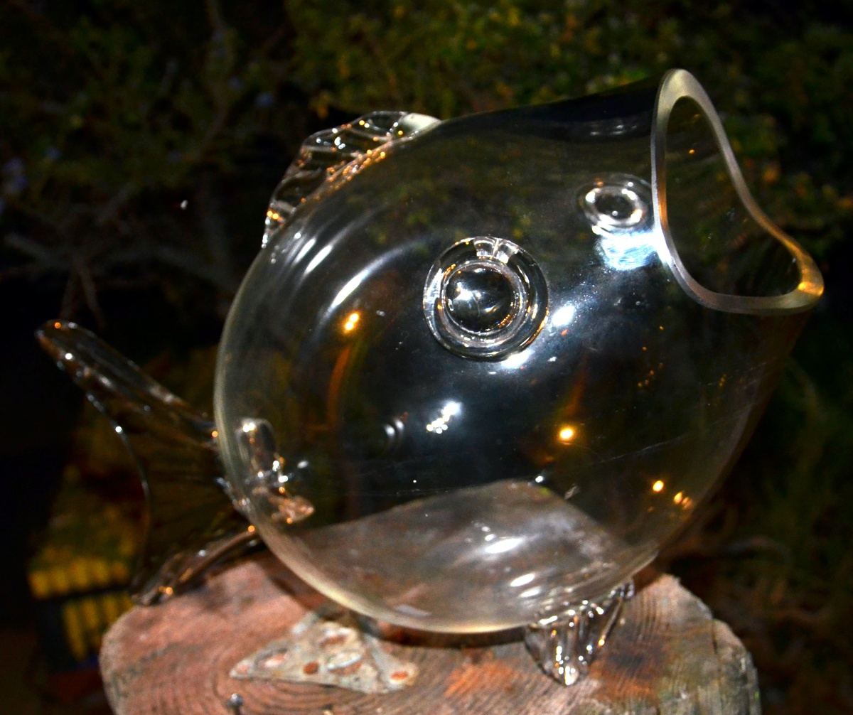 Huge glass fish bowl collectors weekly for Glass fish bowls