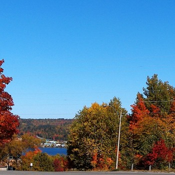 Inspired by caperkid - Fall Leave Colors In My Home Town - Photographs