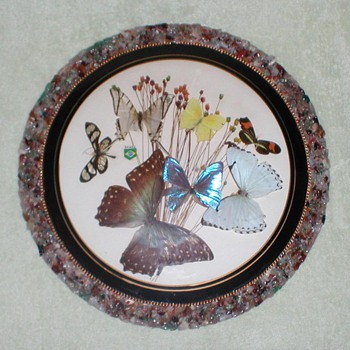 Brazilian Butterfly Wall Plaques - Animals