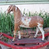 Horse Hair Rocking Horse.... late 1800&#039;s German made?