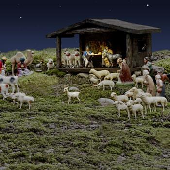 Christmas 2010 photo
