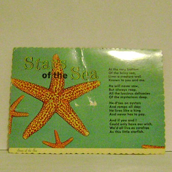 Stars of the Sea Postcard