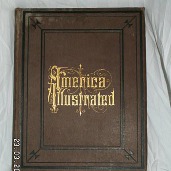 1879 America Illustrated  - Books