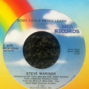 Steve Wariner 45 Record - Records