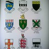 Irish Families- Their names, arms and orgins