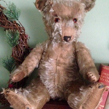 Mystery Bear from Canada - Dolls