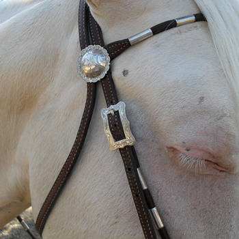 Cowgirl's first and favorite pick. - Sterling Silver