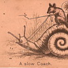 A Slow Coach - What the heck is this?