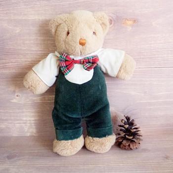Long Lost Teddy Bear Help