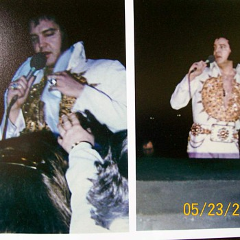 Elvis in concert a few months before his death  - Photographs