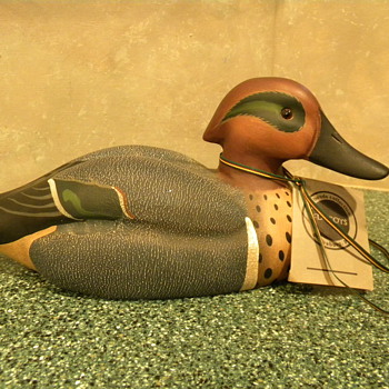 My Green-winged Teal Duck