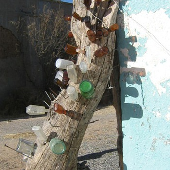 Bottle display and bottle tree in Texas town