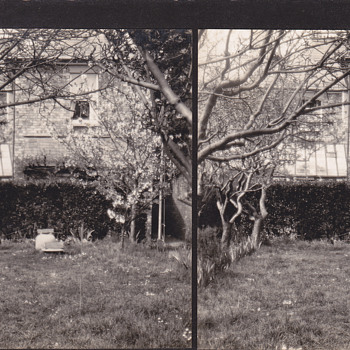 Stereoview - Private8 - Photographs