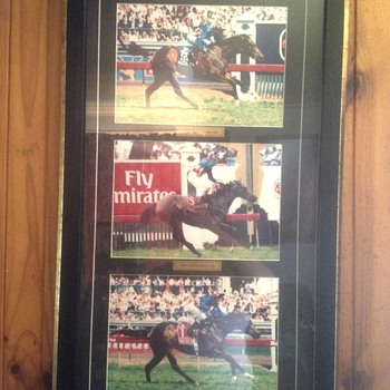 Makybe diva picture  - Posters and Prints