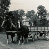 Steam and Horse powered photos #8