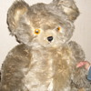 Just found Knickerbocker bear