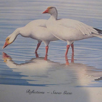 SNOW GEESE AND PINTAILS (A Painting in Limited Edition Print ) 