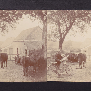 Stereoview - Private32 - Photographs