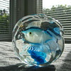 A Cenedese fish aquarium paperweight