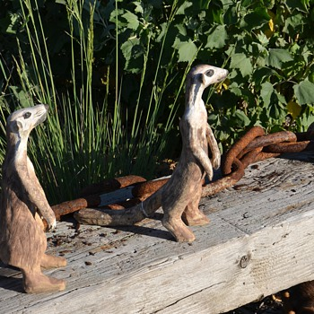 Three of My Four Meerkats