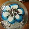 Blue Flower Murano?