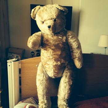 Help identify my teddy