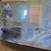 Robert Bateman  -  Portraits of Nature - Giant Panda  -  Signed Gallery Poster
