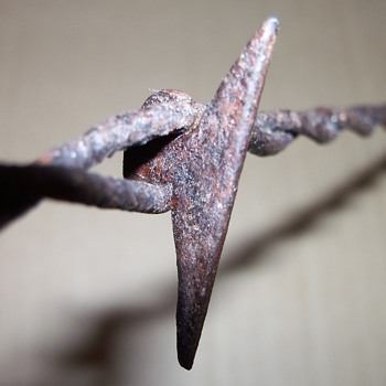 More Antique Barbed Wire