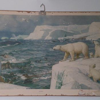 School poster 1937