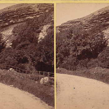 Undercliff Near Niton - Photographs