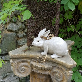 Garden wabbits! - Animals