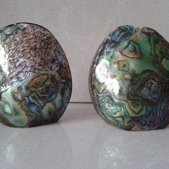 Iridescent Salt and Pepper Pots Paua Shell :)