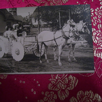 PHOTO  , ALONG A PARADE ROUTE IN DECORATED HORSE DRAWN VEHICLE (TALK ABOUT THE EMISSIONS!!) - Photographs