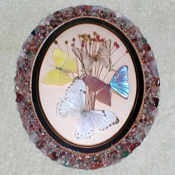 Butterflies from Brazil Wall Plaque - Folk Art