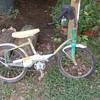 Mystery Bike ???