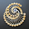 Lions Club Brooch - Identify?