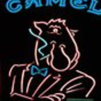 Camel Joe Neon - Signs